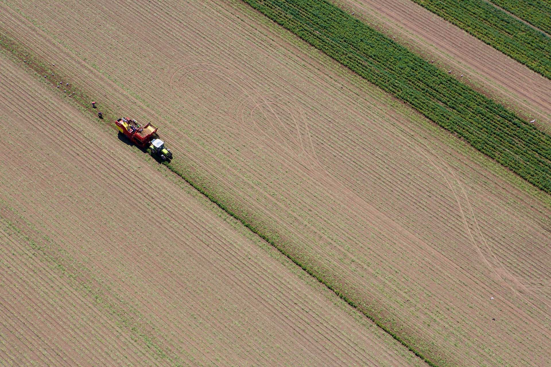 Aerial View of Farmers Ploughing Field, Jersey